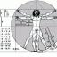 I Numeri di Fibonacci e il corpo umano, più i rapporti delle misure del corpo si avvicinano a questi più la bellezza è maggiore.
